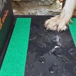 Steps for dogs - non-slip